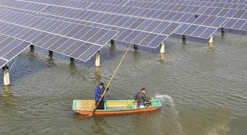>泰和县100MW渔光互补光伏发电项目(一期22MW)